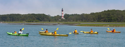 Guided Kayak Tours along Assateague